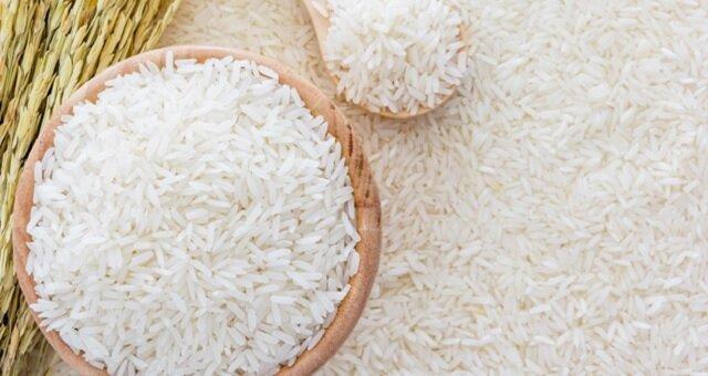 40 درصد برنج گیلان برداشت شده است