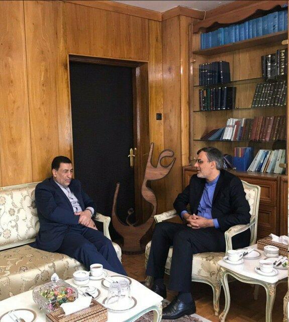 رایزنی معاون ظریف با آوایی درباره راه های حمایت و صیانت از حقوق ایرانیان مقیم خارج از کشور