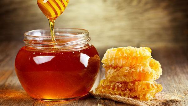 افزایش سه برابری برداشت عسل در گناباد