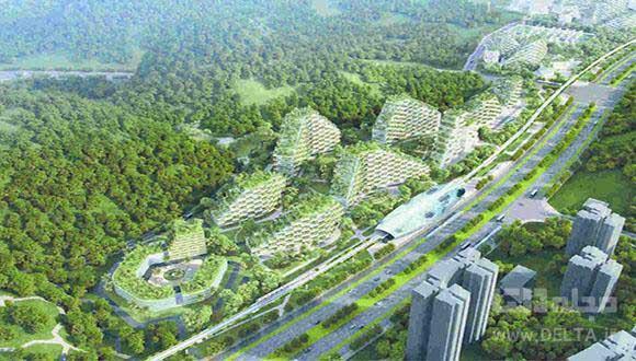شهر جنگلی چین ؛ با برج های مسکونی سرسبز عمودی