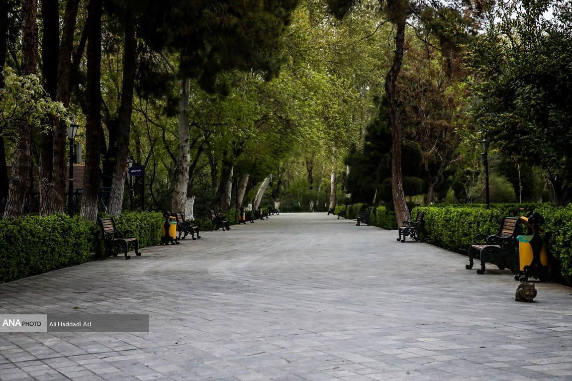 استفاده از طرح های دانش بنیان دانشگاه آزاد اسلامی برای توسعه شهر دلند