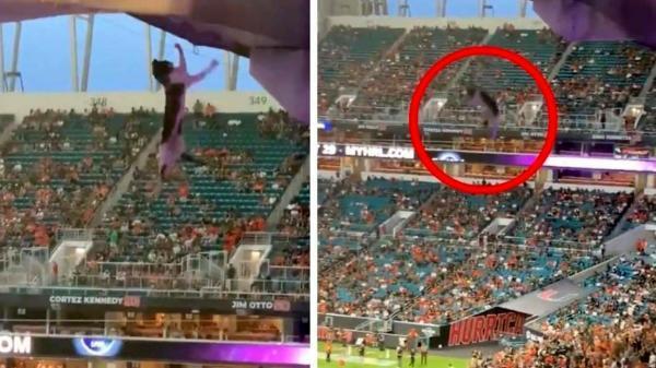 این گربه تماشاگران فوتبال را به خود مشغول کرد